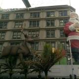 Vánoce NZ 08