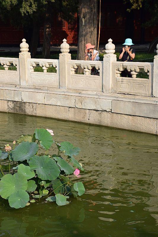 Peking10