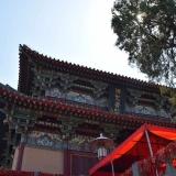 Luoyjang 11