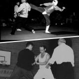 David Gaffney - NPC Nationals 1994+British Open Kung Fu Ch Push Hands Final 1997
