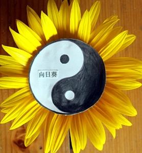 Taijiquan Slunečnice - logo