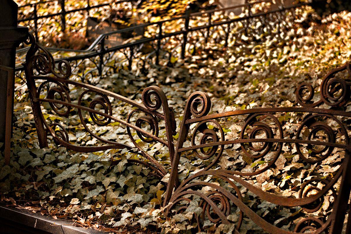Hřbitovy-Umění pouštět 4