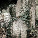 Hřbitovy-Umění pouštět 1