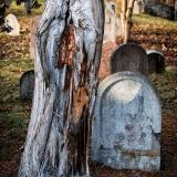 Hřbitovy-Umění pouštět 10