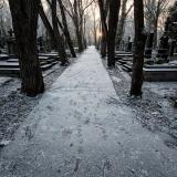 Hřbitovy-Umění pouštět 11