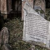 Hřbitovy-Umění pouštět 9